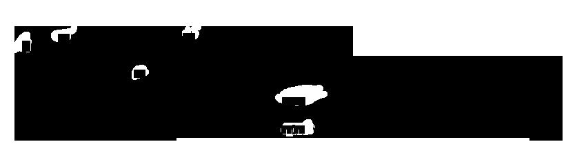 Профилированный лист С10 размеры