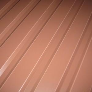 Профнастил С(ПС) 20 коричневого цвета по хорошей цене